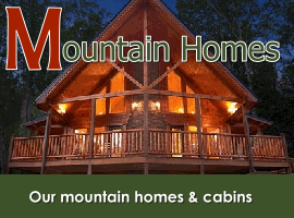 Mountain homes & cabins